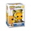 pokemon-raichu-funko-201218.png
