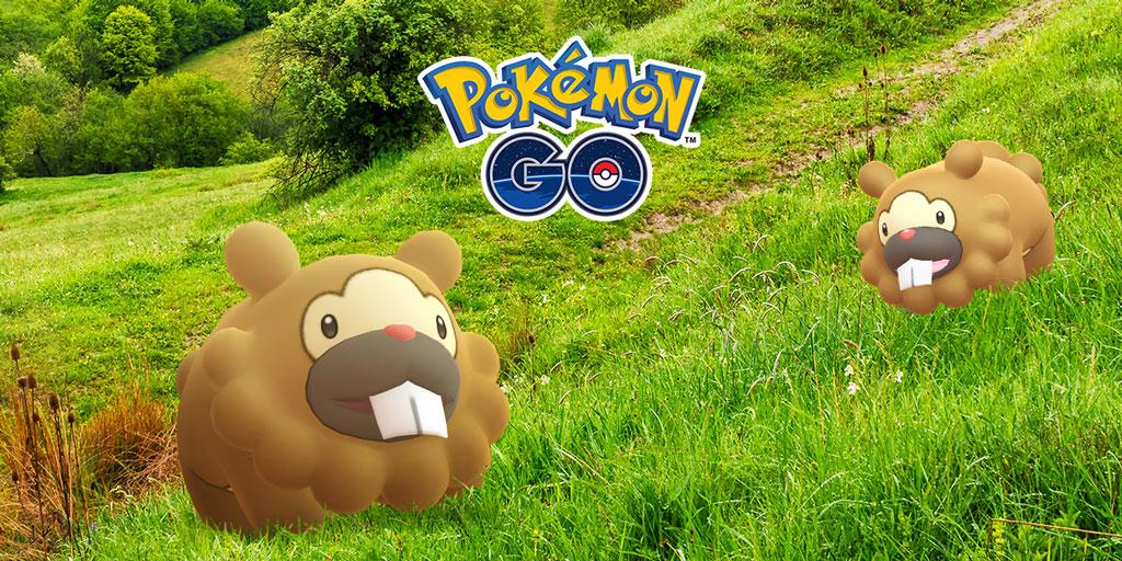 Bidoof Pokémon GO.jpg