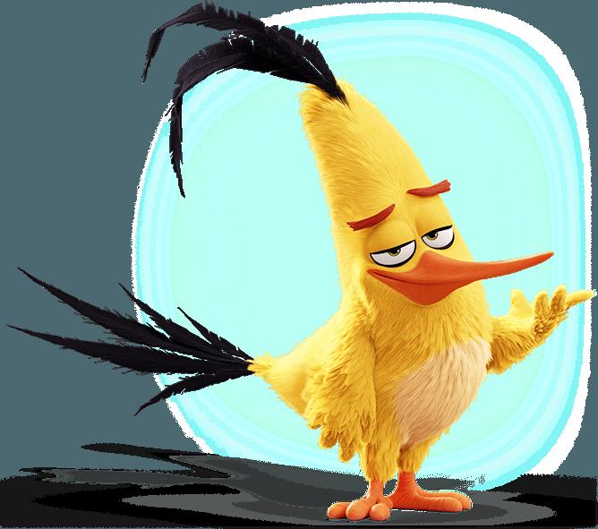 chuck-highlight-image.png