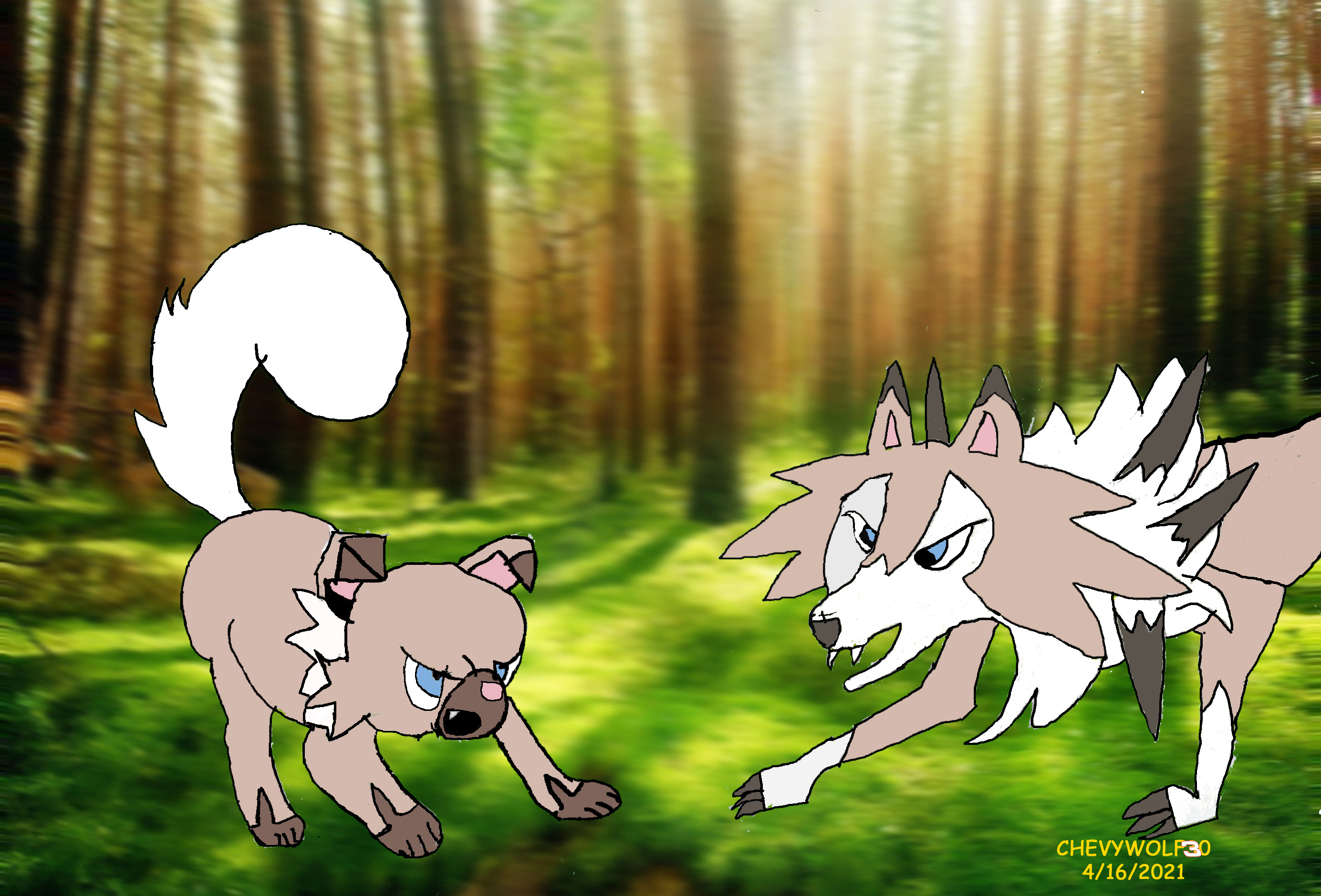 Lycanroc playing with Rockruff copy.jpg