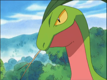 pokemon_exploud_and_clear_grovyle.png