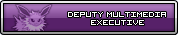 Deputy Multimedia Executive